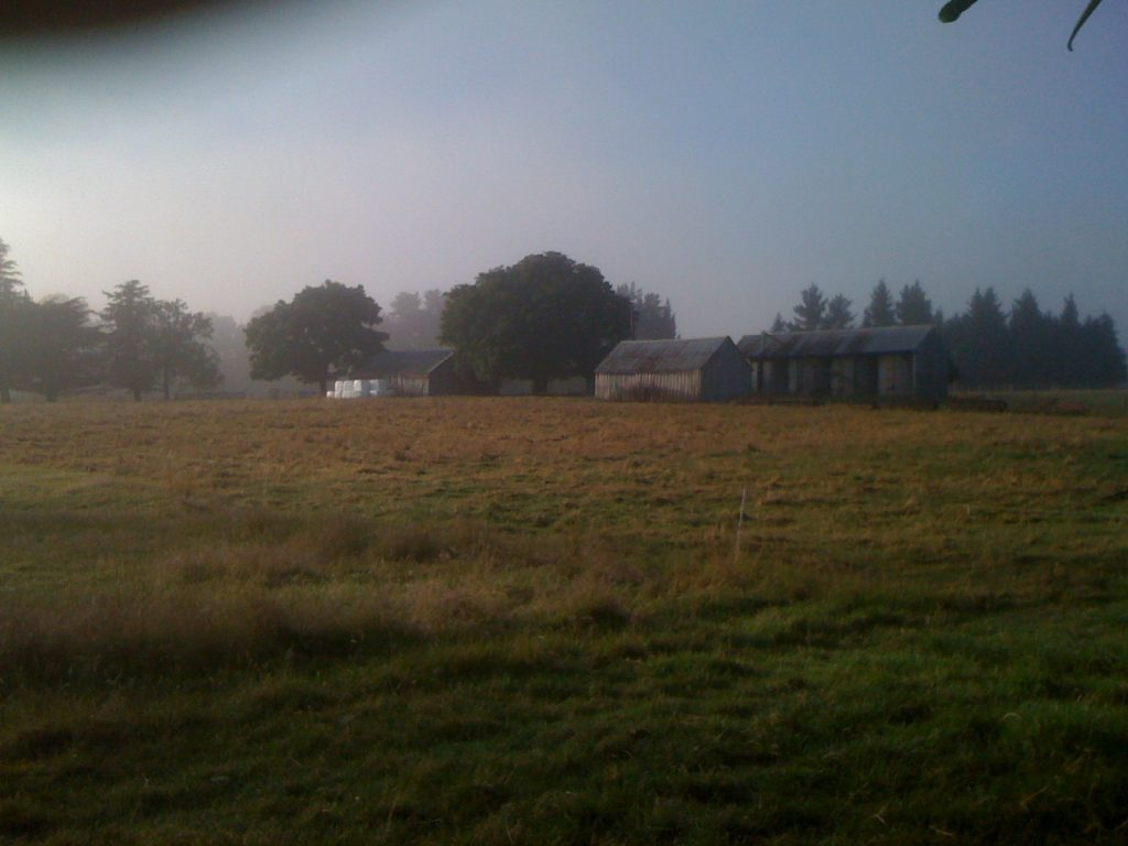 Farm buildings early morn
